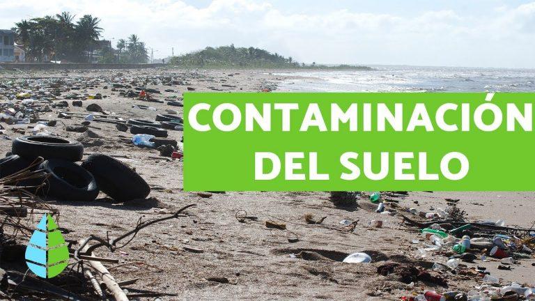 CONTAMINACIÓN DEL SUELO – Causas, consecuencias y SOLUCIONES