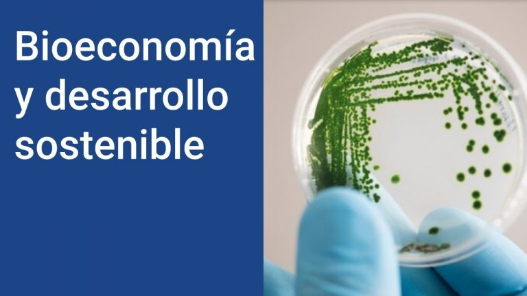 Bioeconomía: Ejemplos de qué es y cómo influye en el desarrollo sostenible