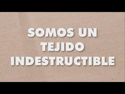SOMOS FIBRA DEL TEJIDO CREATIVO Y CULTURAL – IXEL ONLINE