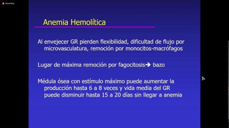 1016 Síndrome Hemolítico