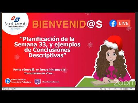 Transmisión en vivo (17 -11-20) Planificación de la Semana 33/ Ejemplos de Conclusiones Descriptivas
